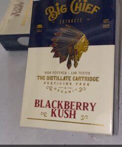 Big Chief THC Cartridge 1G - Blackberry Kush