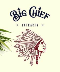 Big Chiefs Carts